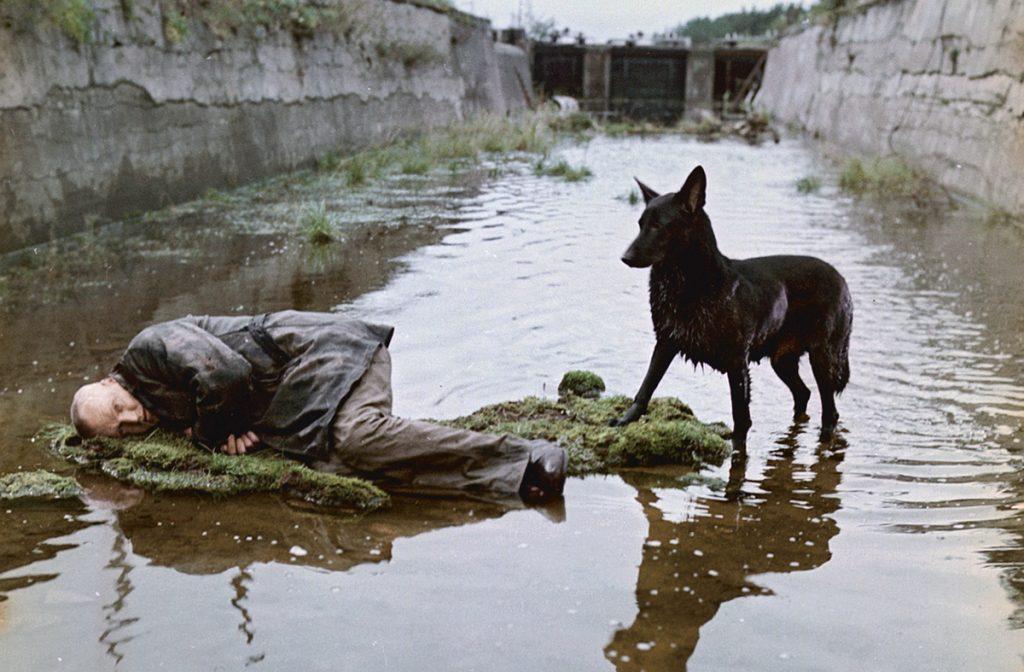Stalker (1979, Soviet Union)